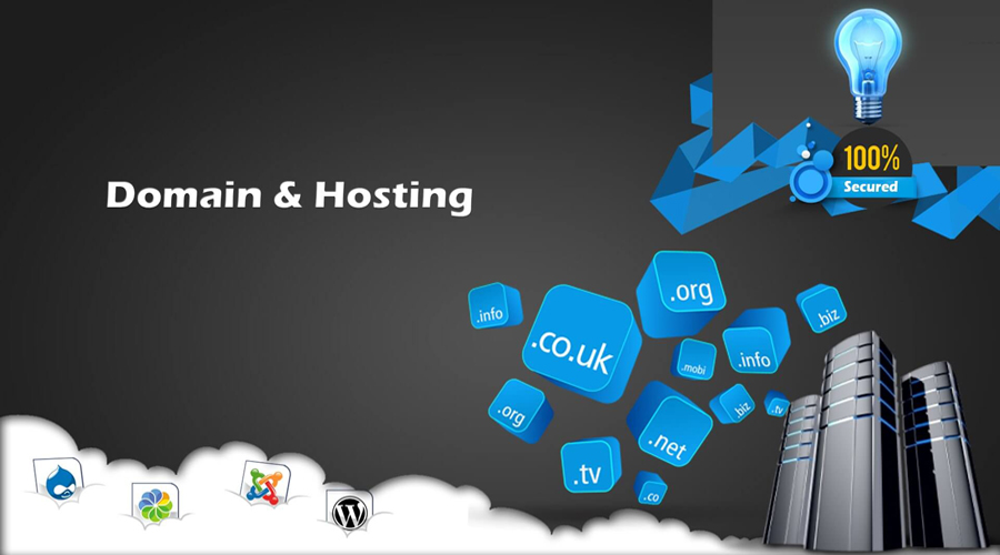 How Choosing a Domain Name and Web Hosting Impacts E-commerce
