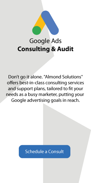 Google Ads Consulting and Audit